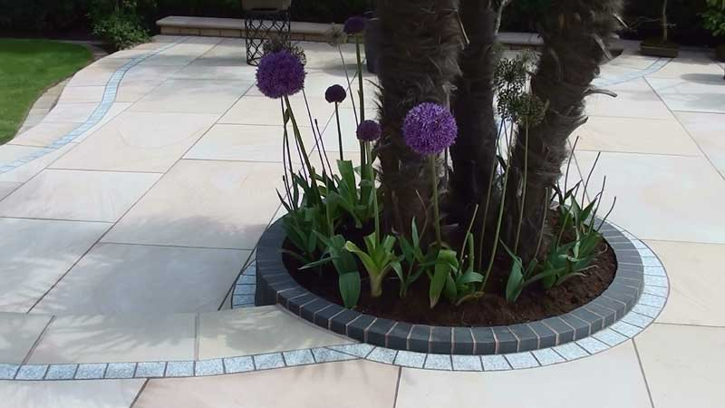 Close up of the circular brick detail round the palm tree with the giant alliums