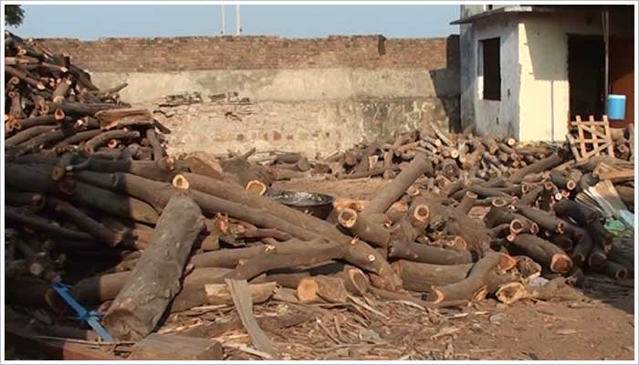 This yard is full of illegal wood, certainly not gained ethically and sustainable